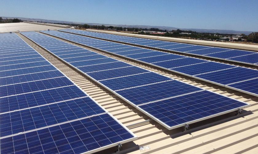 Local government solar at Suntrix